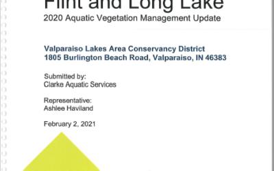 Flint and Long Lake 2020 Aquatic Vegetation Management Update